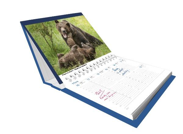 agenda_calendrier_les_saisons