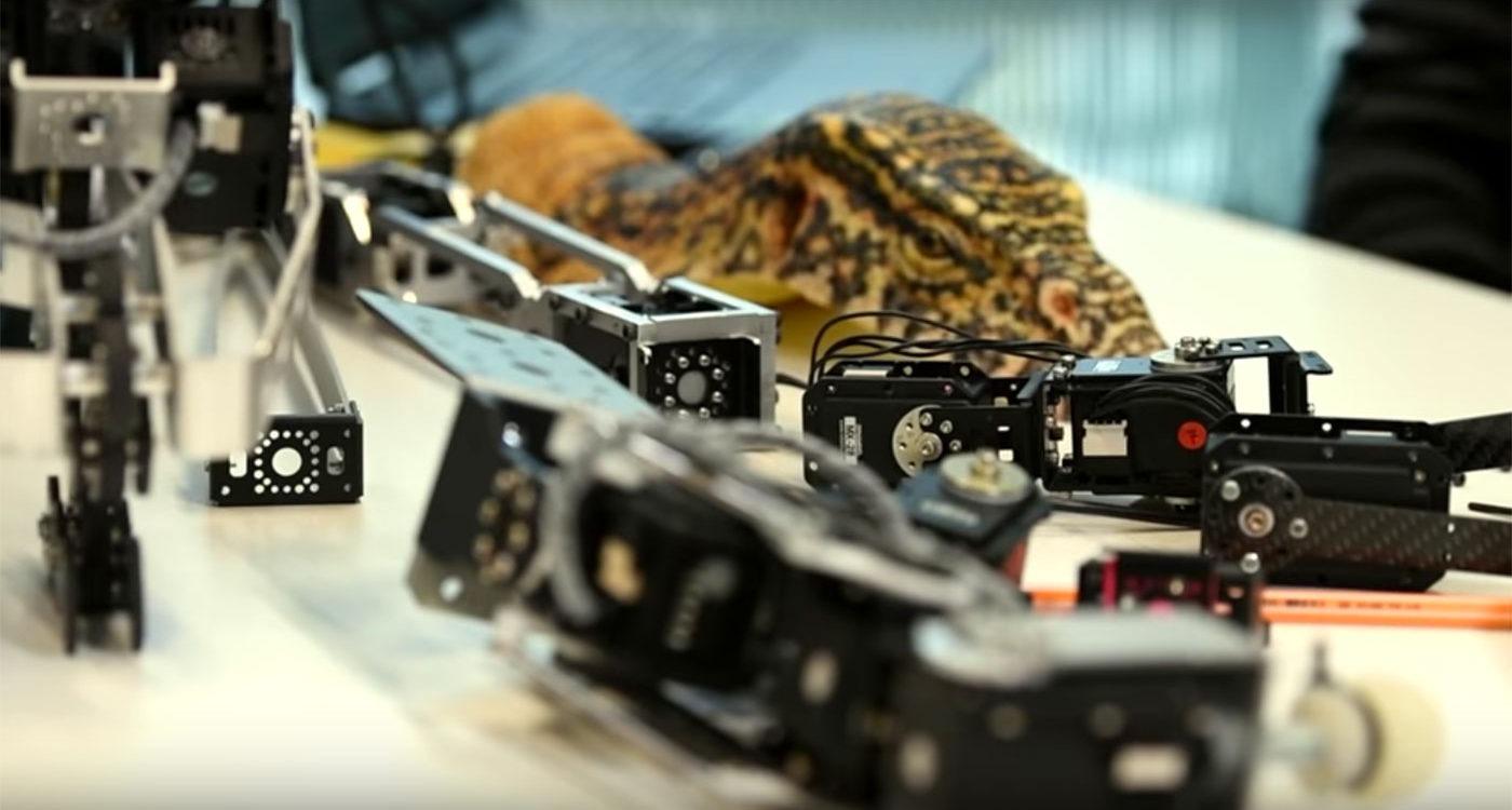 varant drone camera