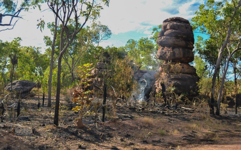 Feu de bush en Australie du Nord
