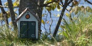 Petite maison en bois Ecosse